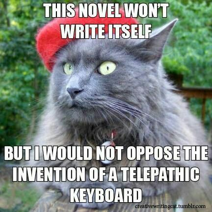 writing-cat