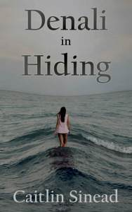 denali-in-hiding-cover-for-kindle